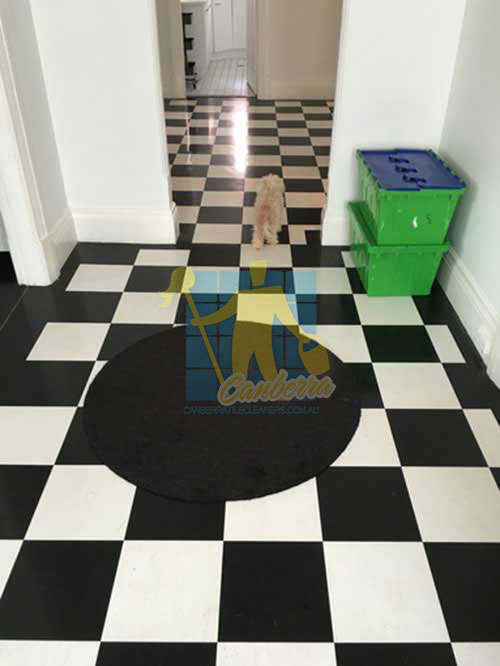black and white marble floor after cleaning