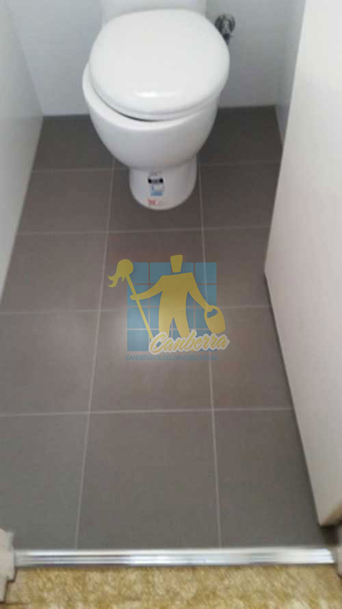 cleaned bathroom porcelain floor tiles