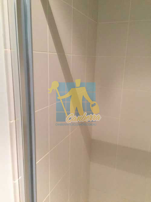 Tile Repairs gungahlin cleaned bathroom porcelain wall tiles with cleaned white grout lines